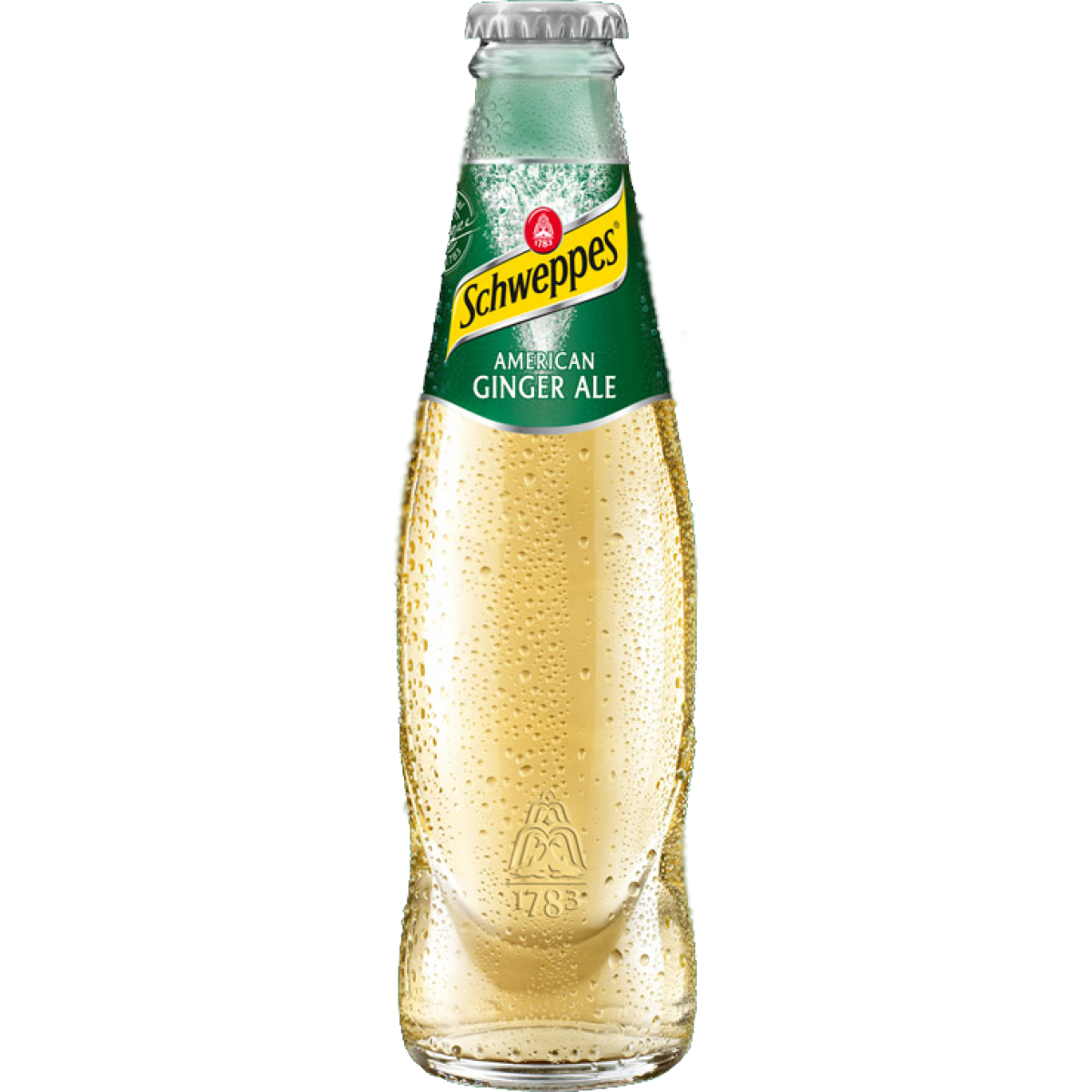 Schweppes GingerALE 24x0,2L